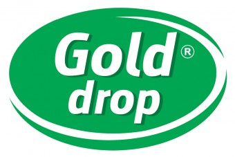 Interview with Paweł Tokarczyk, Sales Director of GOLD DROP