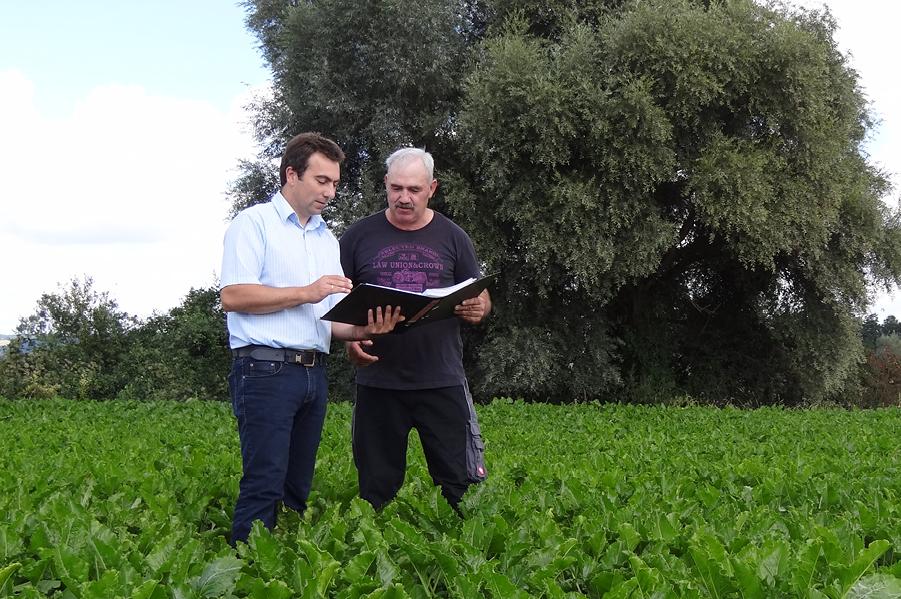 Südzucker earns certificate for sustainable beet cultivation in Europe